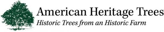 american heritage trees logo